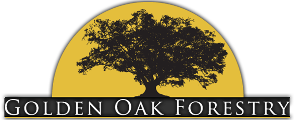 Golden Oak Forestry Service